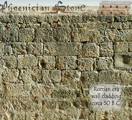Roman Sea stone© Reclaimed Walls Cladding (2000 years old)