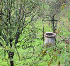 Wellhead French Bastide